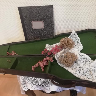 Vionliekasten Geigenkasten